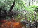 image 3764 of bukit sarang
