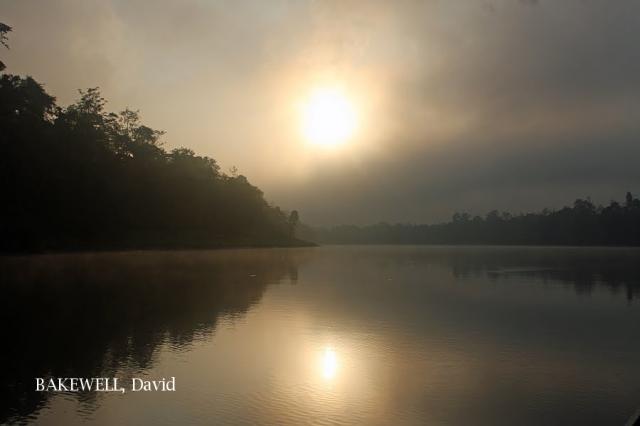 image 4335 of Kinabatangan River