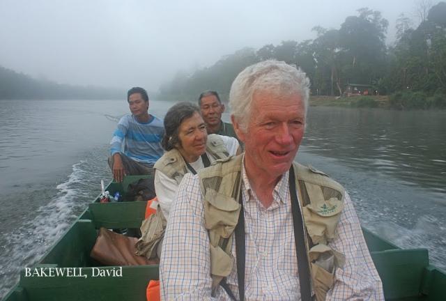 image 4341 of Kinabatangan River