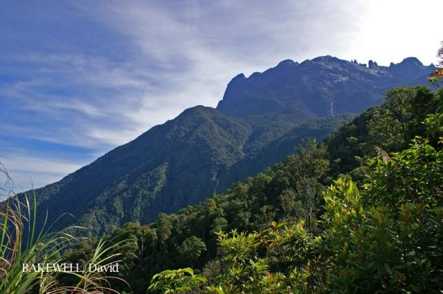 image 5031 of HQ, Kinabalu Park