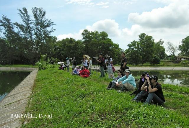 image 4711 of Tutong Sewage Works