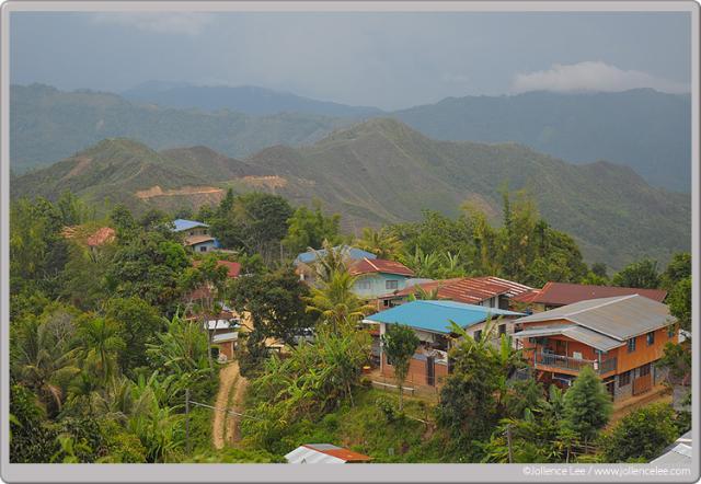 image 4446 of Kiau