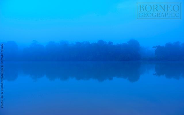image 4439 of Kinabatangan River