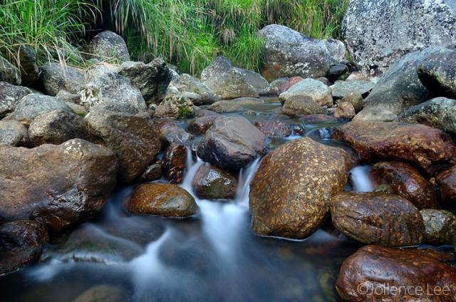 image 4473 of Mesilau, Kinabalu Park