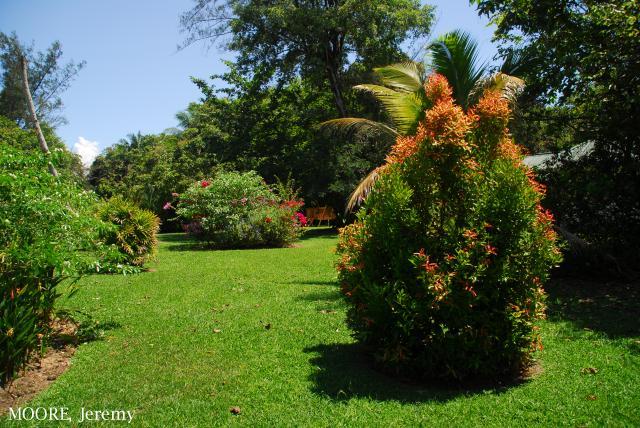 image 5460 of Panaga