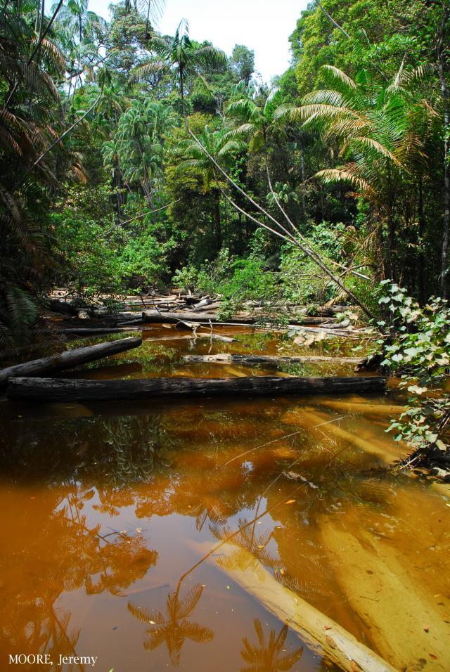 image 5458 of Similajau