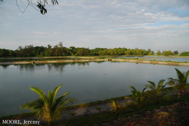 image 5462 of Tutong Sewage Works