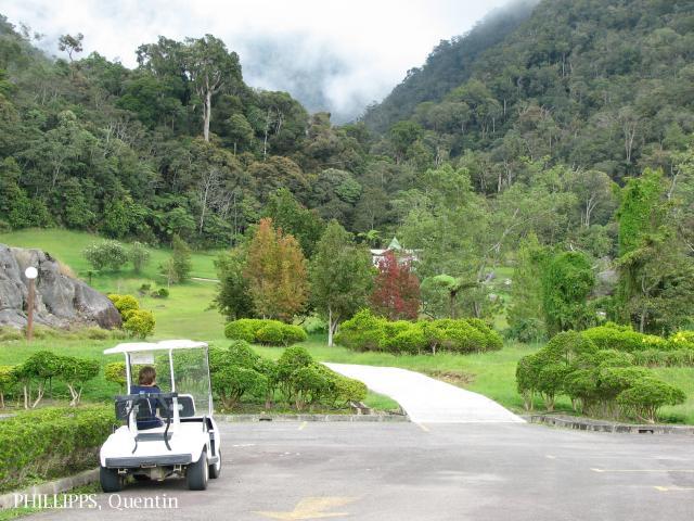 image 3790 of Mesilau, Kinabalu Park