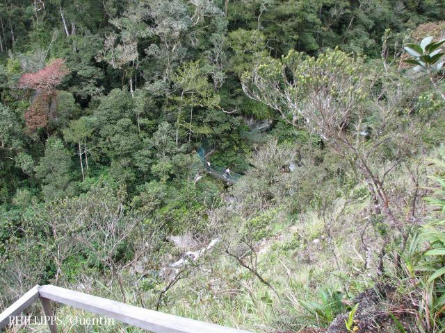 image 3784 of Mesilau, Kinabalu Park