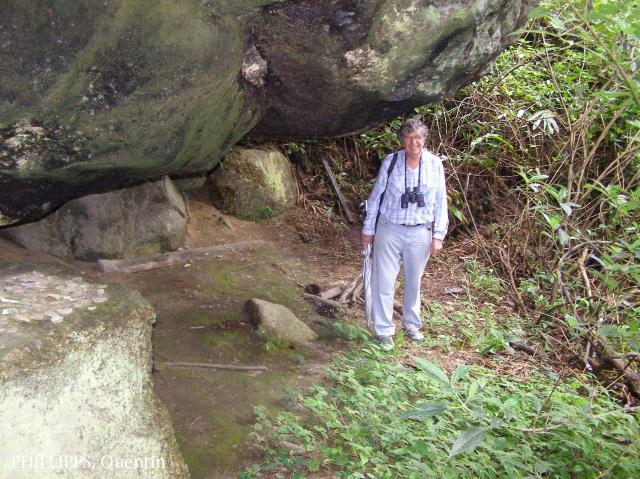 image 3791 of Mesilau, Kinabalu Park