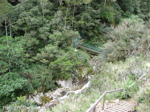 image 3780 of Mesilau, Kinabalu Park