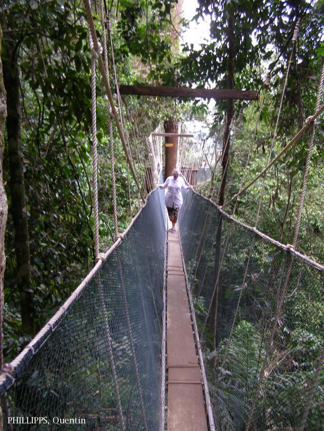 image 3821 of Poring, Kinabalu Park