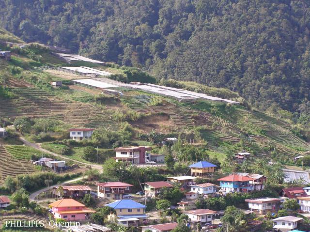 image 3863 of Kundasang
