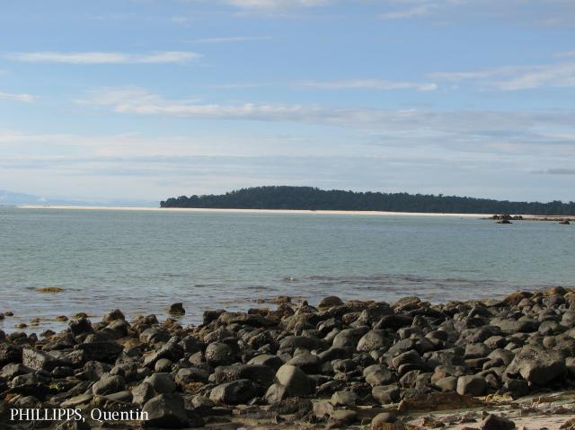 image 3557 of Pulau Tiga