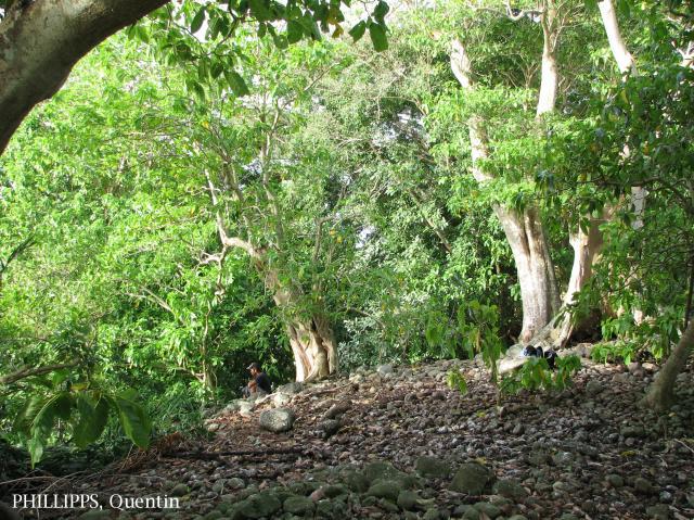 image 3554 of Pulau Tiga