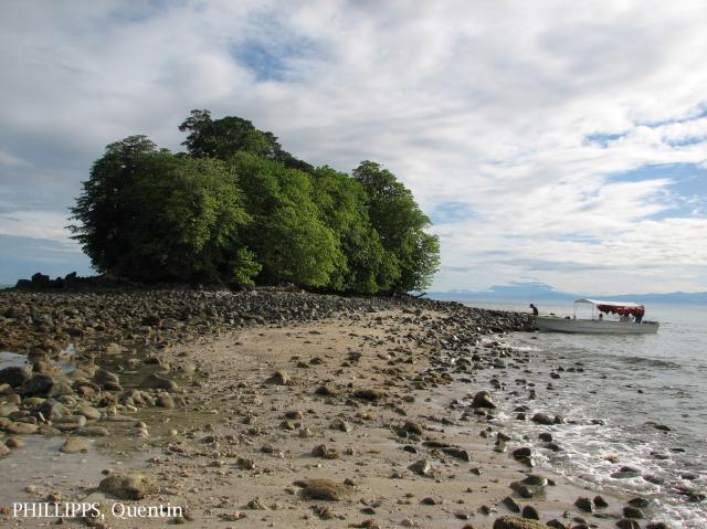image 3559 of Pulau Tiga