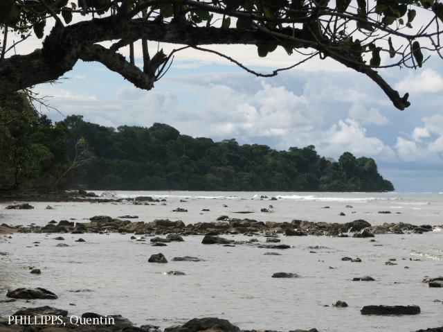 image 3551 of Pulau Tiga