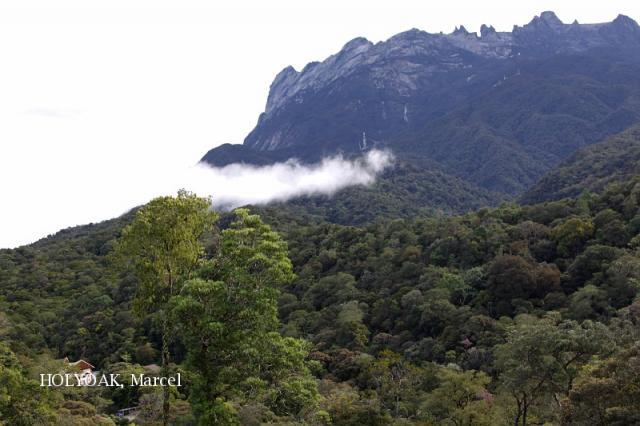 image 4963 of HQ, Kinabalu Park