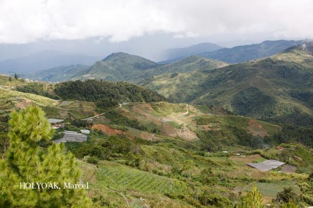 image 4965 of Kundasang