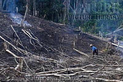 image 4893 of HQ, Kinabalu Park