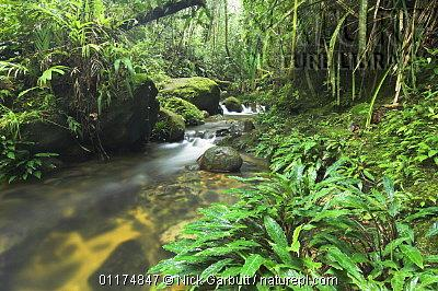 image 4892 of HQ, Kinabalu Park