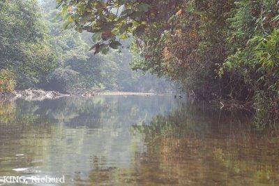 image 4630 of Mulu National Park