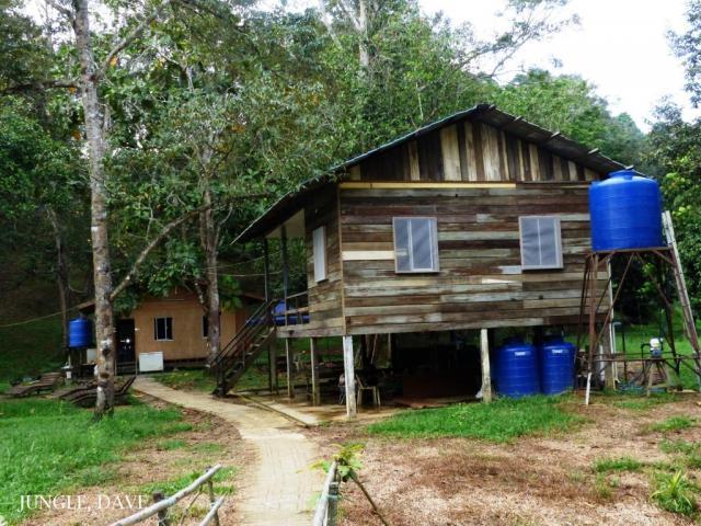 image 8002 of Project Habitat Brunei