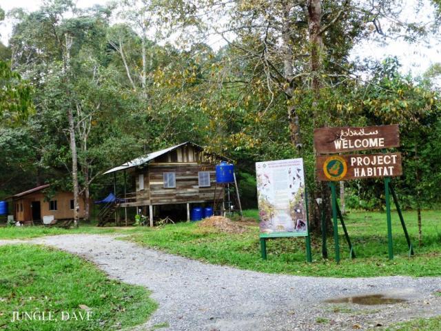 image 8003 of Project Habitat Brunei